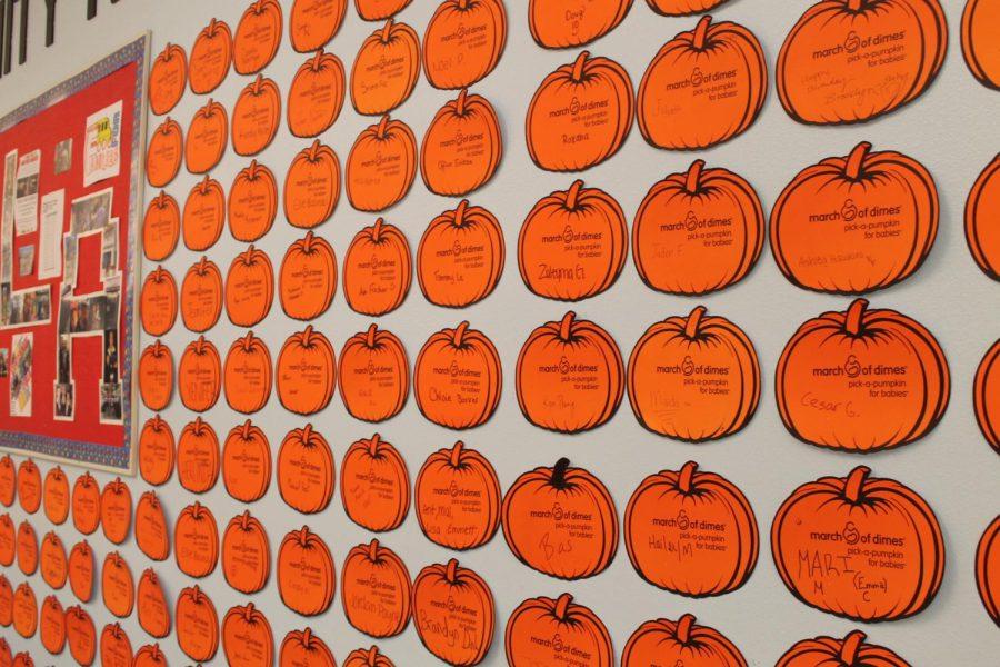 March+of+Dimes%2C+Pick+a+Pumpkin.