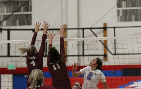 Volleyball Comes As Close As Possible Against Gresham But Streak Continues