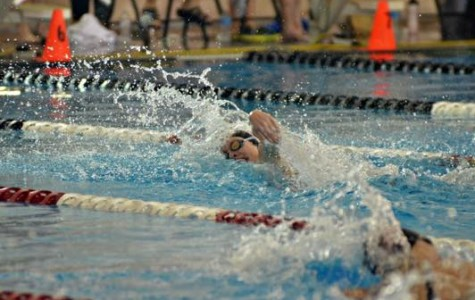 Junior Jamie Stone is one of the top age-level swimmers in the nation.
