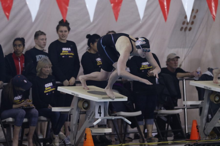 Senior Jamie Stone dives off the block to start the 50m freestyle championship. Stone won the event for the forth time on Saturday.