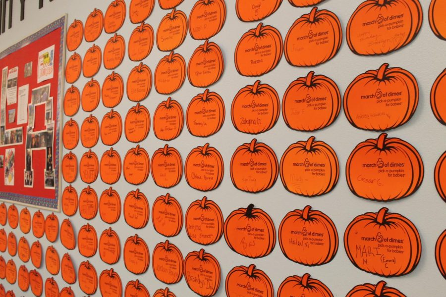 March of Dimes, Pick a Pumpkin.