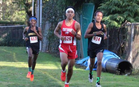 Cross Country Spotlight